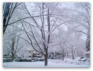 Portsmouth NH Homes - Snowy Views