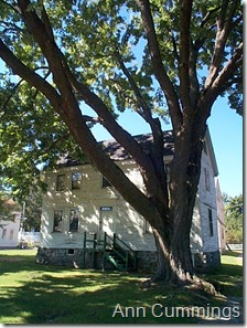Strawbery Banke Colonial Home and Old Maple Tree - Portsmouth NH - Ann Cummings 2007