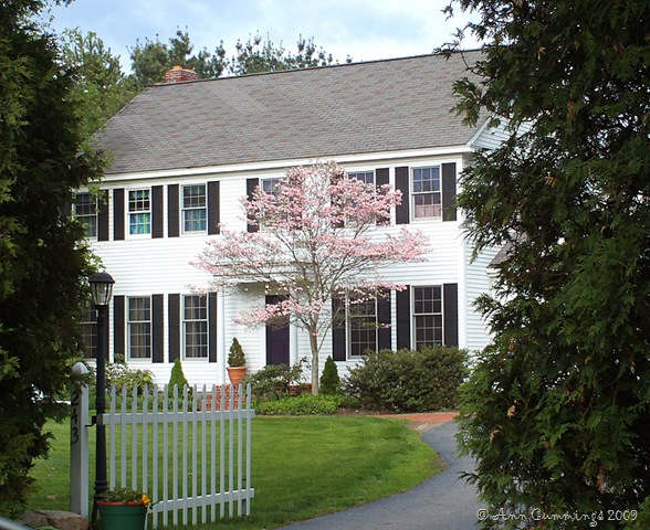 Homes In Portsmouth Nh Portsmouth Nh Homes Condos Real